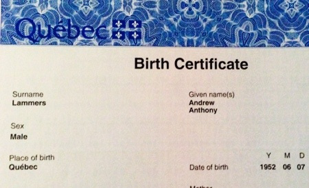 Certificate Of Birth Template Free Performance Review Templates