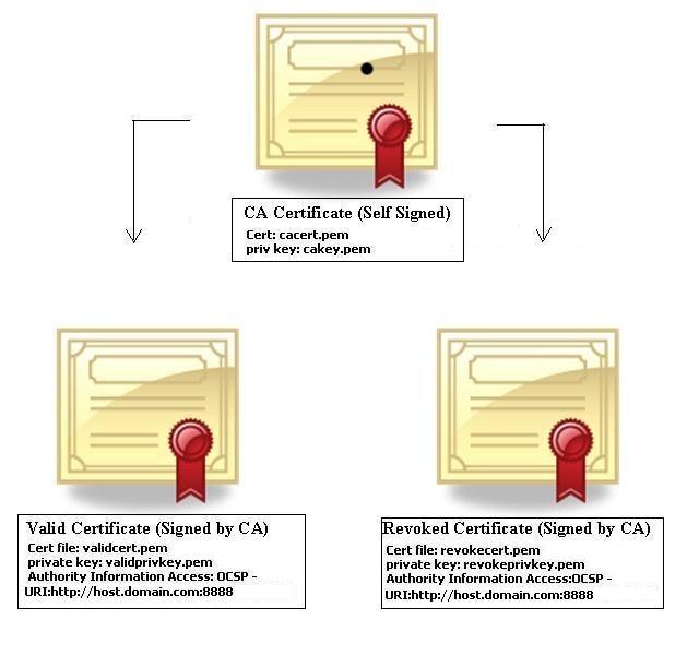 X.509 V3 certificate [12]