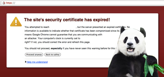 How An Expired SSL Certificate Could Impact SEO Traffic For