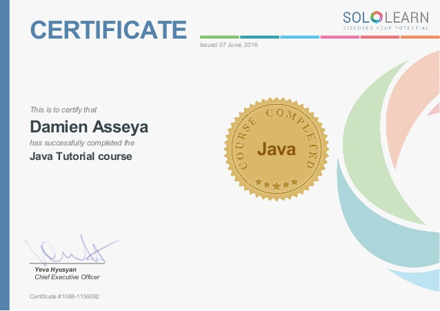 Sololearn Certificate – Java Tutorial Course – Francesco Urbano