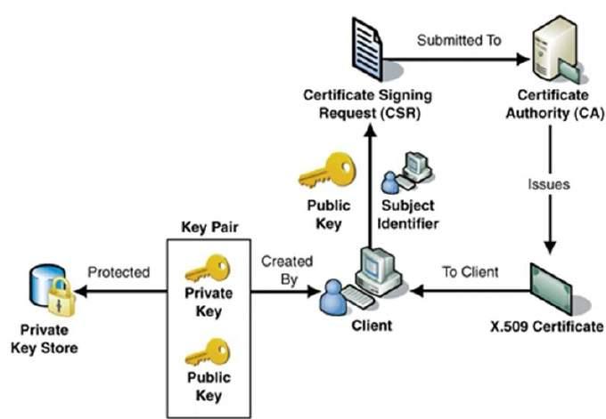 Public key certificate Wikipedia