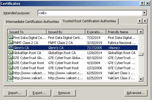 TLS on Windows: Setting Up Digital Certificates :: Encryption in
