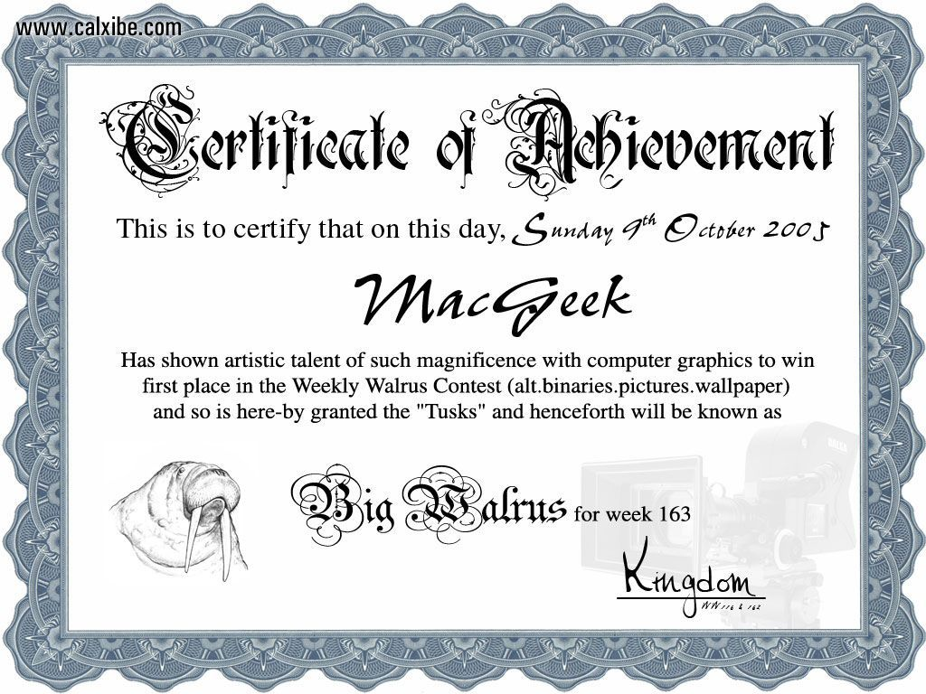 Miscellaneous: Certificate of Achivement, picture nr. 12715