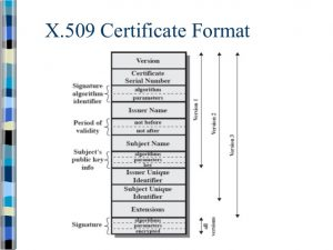 X 509 certificate example certificates templates free x 509 certificate example yelopaper Choice Image